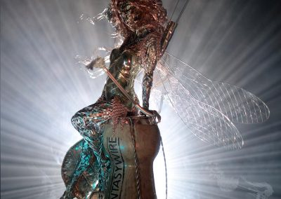 Navras fairy 2