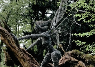 Tree Creeper iphone 1