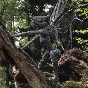 Tree Crawler